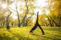 Γυναίκα που κάνει τη γιόγκα στο πάρκο φθινοπώρου Στοκ φωτογραφία με δικαίωμα ελεύθερης χρήσης