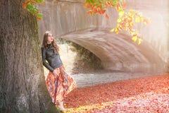 Γυναίκα που κλίνει σε ένα δέντρο στα χρώματα φθινοπώρου Στοκ φωτογραφίες με δικαίωμα ελεύθερης χρήσης