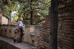Γυναίκα που κλίνει σε ένα μπαλκόνι που αντιμετωπίζει τα δέντρα πεύκων στοκ εικόνες