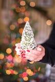 Γυναίκα που κρατά ένα μικροσκοπικό χριστουγεννιάτικο δέντρο στα χέρια της Στοκ Φωτογραφίες