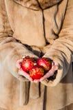 Γυναίκα που κρατά κινηματογράφηση σε πρώτο πλάνο τριών την κόκκινη σφαιρών Χριστουγέννων Στοκ Εικόνα