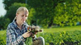Γυναίκα που κρατά τα φρέσκα πράσινα κρεμμύδια, που μαδήθηκαν ακριβώς από τον κήπο απόθεμα βίντεο