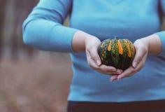 Γυναίκα που κρατά την πορτοκαλιά και πράσινη κολοκύθα Στοκ Φωτογραφία