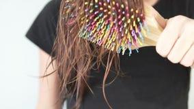Γυναίκα που κτενίζει αργά την υγρή τρίχα με μια ξύλινη βούρτσα γηα τα μαλλιά απόθεμα βίντεο