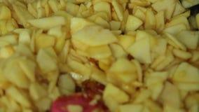 Γυναίκα που μαγειρεύει και που αναμιγνύει τα συστατικά για μια πίτα μήλων φιλμ μικρού μήκους