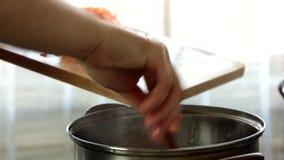Γυναίκα που μαγειρεύει στο σπίτι να προσθέσει τα βαθμολογημένα καρότα στη σούπα απόθεμα βίντεο