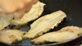 Γυναίκα που μαγειρεύει το quesadilla γλυκών πατατών απόθεμα βίντεο