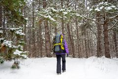 Γυναίκα που με το μεγάλο σακίδιο πλάτης στο όμορφο χειμερινό δάσος Στοκ εικόνα με δικαίωμα ελεύθερης χρήσης