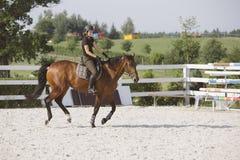 Γυναίκα που οδηγά ένα άλογο στο δαχτυλίδι αλτών Στοκ Εικόνα
