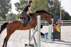 Γυναίκα που οδηγά ένα άλογο στο δαχτυλίδι αλτών Στοκ εικόνα με δικαίωμα ελεύθερης χρήσης