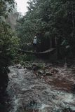 Γυναίκα που πέρα από μια γέφυρα στο τροπικό δάσος στοκ φωτογραφία με δικαίωμα ελεύθερης χρήσης
