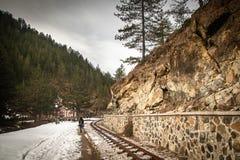 Γυναίκα που περπατά από το σιδηρόδρομο μέσω του δάσους στην ανατολή στοκ εικόνες