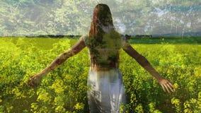 Γυναίκα που περπατά σε έναν τομέα των λουλουδιών απόθεμα βίντεο