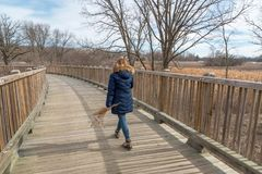 Γυναίκα που περπατά στα ξύλινα wildflowers εκμετάλλευσης γεφυρών στοκ εικόνες