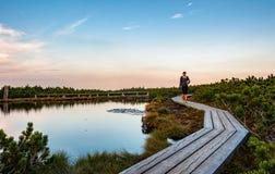 Γυναίκα που περπατά στην ξύλινη πορεία στη φύση στοκ εικόνες