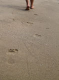 Γυναίκα που περπατά στην παραλία άμμου που αφήνει τα ίχνη Στοκ εικόνα με δικαίωμα ελεύθερης χρήσης