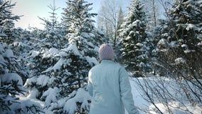 Γυναίκα που περπατά στο δάσος μόνο στο μέρος του χιονιού φιλμ μικρού μήκους