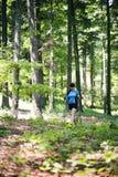 Γυναίκα που περπατά στο δάσος στοκ εικόνα
