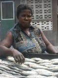 Γυναίκα που προετοιμάζει τα καπνισμένα ψάρια στη Γκάνα Στοκ Φωτογραφίες