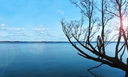 Γυναίκα που στέκεται σε ένα δέντρο και που κοιτάζει πέρα από τη λίμνη Στοκ Φωτογραφίες