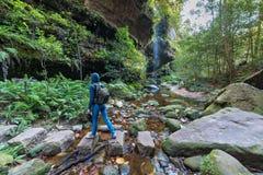 Γυναίκα που στην αγριότητα του τροπικού δάσους στοκ φωτογραφίες