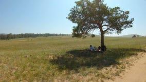Γυναίκα που στηρίζεται στη σκιά ενός δέντρου απόθεμα βίντεο