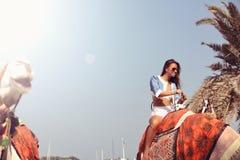 Γυναίκα που ταξιδεύει στην καμήλα Στοκ Εικόνες