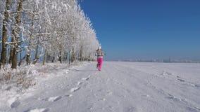 Γυναίκα που τρέχει μακριά στην απόσταση σε έναν χιονισμένο τομέα την ημέρα χειμερινών νεράιδων απόθεμα βίντεο
