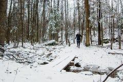 Γυναίκα που τρέχει στο χιόνι Στοκ Εικόνα