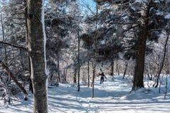 Γυναίκα που τρέχει στο χιόνι Στοκ φωτογραφίες με δικαίωμα ελεύθερης χρήσης
