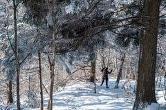 Γυναίκα που τρέχει στο χιόνι Στοκ Φωτογραφία