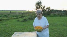 Γυναίκα που φέρνει ένα κύπελλο chanterelles μανιταριών απόθεμα βίντεο