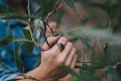 Γυναίκα που φορά ένα δαχτυλίδι στοκ εικόνες με δικαίωμα ελεύθερης χρήσης