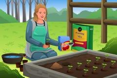 Γυναίκα που φυτεύει τα χορτάρια ελεύθερη απεικόνιση δικαιώματος