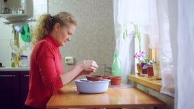 Γυναίκα που φυτεύει τους σπόρους σε ένα δοχείο απόθεμα βίντεο