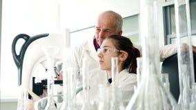 Γυναίκα που χρησιμοποιεί το μικροσκόπιο για τη ιατρική εξέταση απόθεμα βίντεο