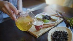 Γυναίκα που χύνει το πράσινο τσάι από Teapot σε Gaiwan στην τελετή τσαγιού παραδοσιακού κινέζικου απόθεμα βίντεο