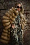 Γυναίκα σε ένα παλτό γουνών Στοκ Εικόνες