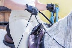 Γυναίκα σε μια σύνοδο εκπαίδευσης αλόγου σε περιστροφές Στοκ φωτογραφίες με δικαίωμα ελεύθερης χρήσης
