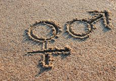 γυναίκα σημαδιών ανδρών Στοκ Εικόνα