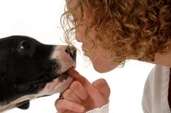 γυναίκα σκυλιών Στοκ Εικόνα