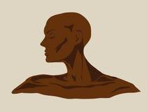 γυναίκα σοκολάτας Στοκ Εικόνες