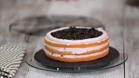 Γυναίκα στην κουζίνα που κατασκευάζει το κέικ βακκινίων φιλμ μικρού μήκους