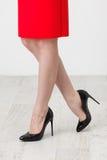 Γυναίκα στην κόκκινη φούστα στοκ εικόνα