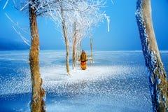 Γυναίκα στη λίμνη πάγου στο όμορφο φόρεμα ethno και τα όμορφα παγωμένα δέντρα Στοκ Φωτογραφία