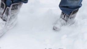 Γυναίκα στις αισθητές μπότες που στέκονται στο χιόνι απόθεμα βίντεο