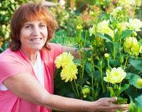 Γυναίκα στις προσοχές κήπων για τα λουλούδια Στοκ φωτογραφία με δικαίωμα ελεύθερης χρήσης