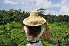 Γυναίκα στον τομέα ρυζιού στο Μπαλί, χαλάρωση πολυτέλειας Στοκ Φωτογραφίες