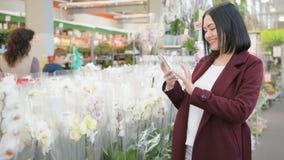 Γυναίκα στο κατάστημα κήπων που χρησιμοποιεί το smartphone με το αυξημένο κατάστημα app πραγματικότητας απόθεμα βίντεο