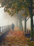 Γυναίκα στο μαύρο περπάτημα κάτω από την αλέα τη misty ημέρα φθινοπώρου Στοκ Φωτογραφίες